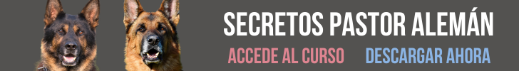 secretos pastor aleman 2